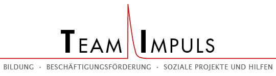 Team Impuls Logo
